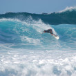 1280px-Surfer_at_Banzai_Pipeline,_North_Shore_(Oahu)