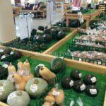 【淡路島】県内最大級の産直品販売所『美菜恋来屋(みなこいこいや)』に行ってきたよ。